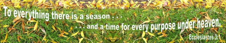 6 season 1