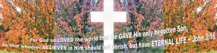 John 3 16 (3)