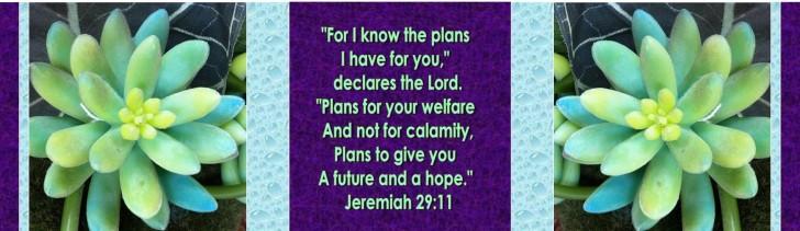 Jer 29 11 (3)